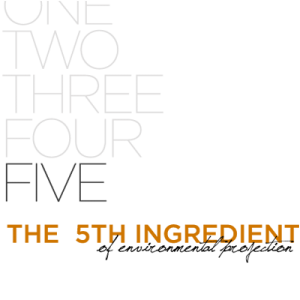 The Fifth Ingredient.
