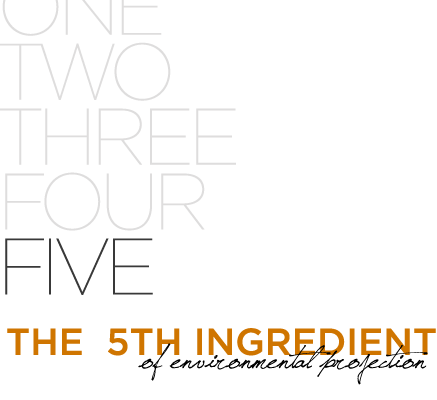 The Fifth Ingredient
