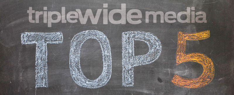 Top 5 Blogs in 2013 on TripleWide Media