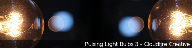 Pulsing Light Bulbs 3 - TripleWide Media
