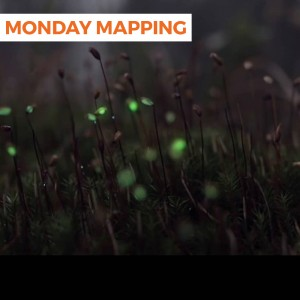 Forrest Projection (Monday Mapping #106)