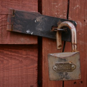 Feature Friday – Media for your next Lock-In!