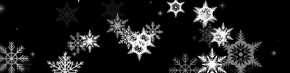 Intricate white snowflakes on black | TripleWide Media
