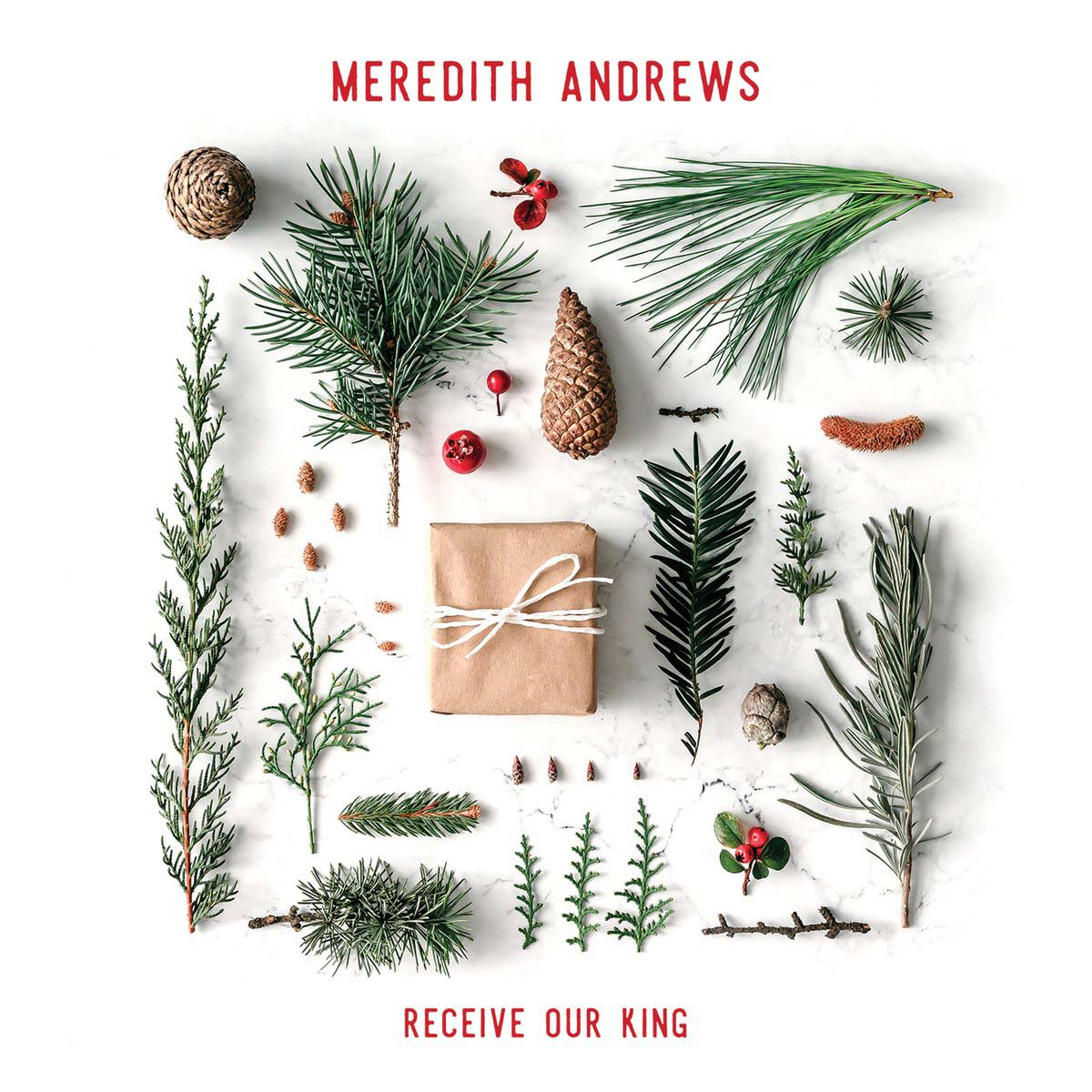 Meredith Andrews Labor of Love Album