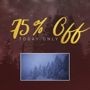 Making it Snow for 75% OFF!